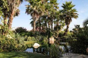Giardino dei Sensi | Oasi del Verde